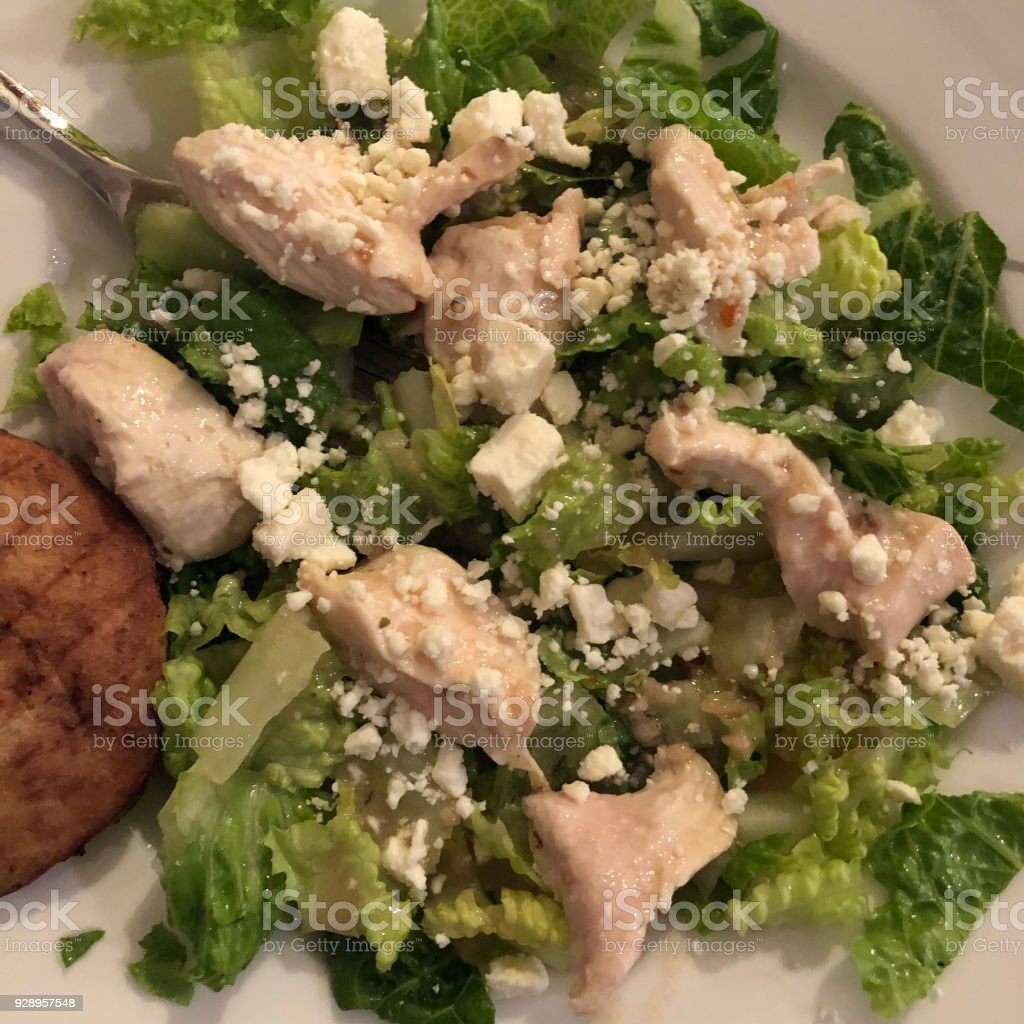 Salad and chicken stock photo