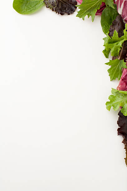 Salad border stock photo