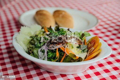 879977192 istock photo Salad dish including cucumber, tomato, lettuce, cabbage, carrot, red oak, shallot, wild rocket topping with mozzarella cheese served with bread. 867308968