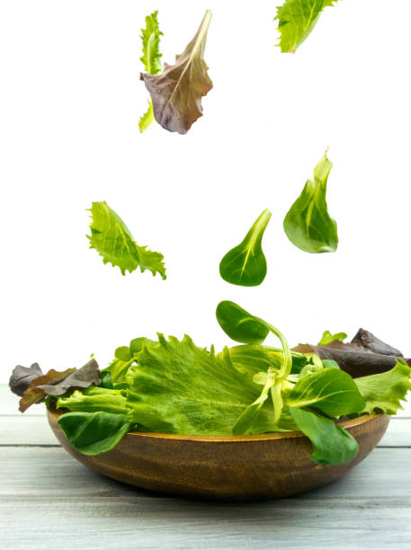 Salad explosion with arugula, beetroot, spinach and sprouts on bright wooden board stock photo