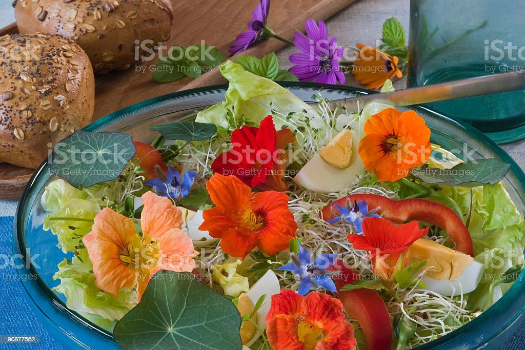 Salad for the summer time stock photo