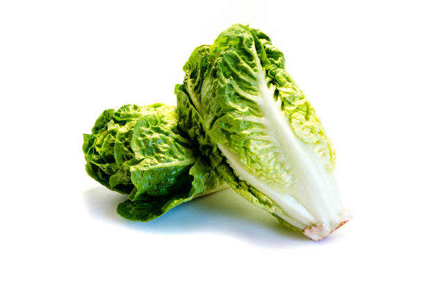 Salad heart isolated on white background Salad heart isolated on white background romaine lettuce stock pictures, royalty-free photos & images