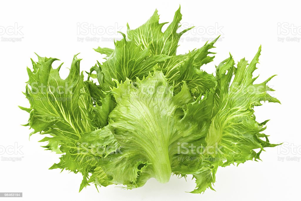 Salad isolated on white royalty-free stock photo