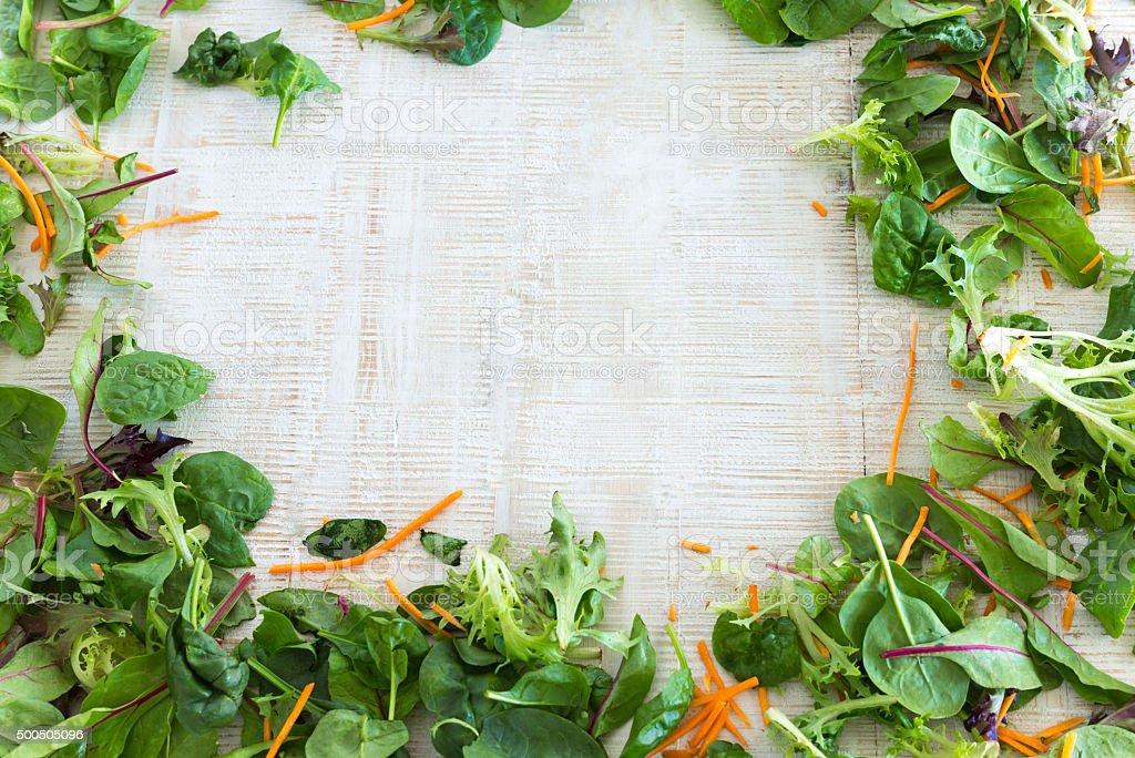 Salad leaves background stock photo