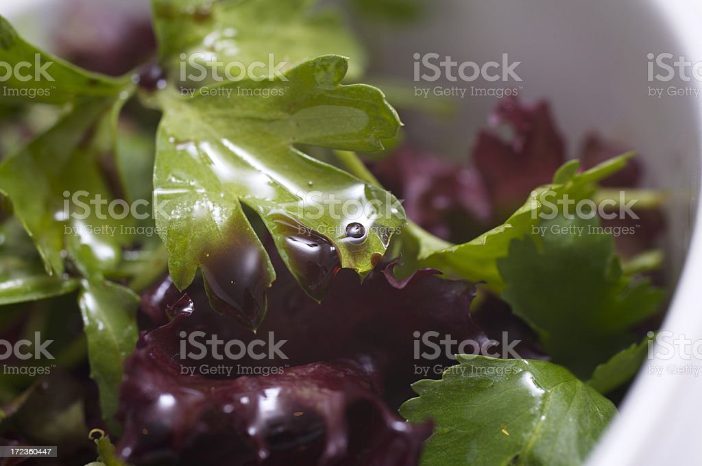 Salad macro royalty-free stock photo