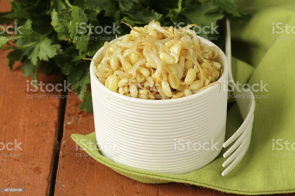 salad of sprouted mung beans in a white bowl stock photo