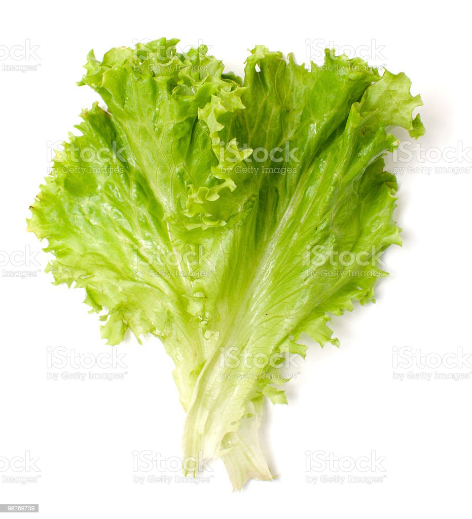 salad royalty-free stock photo