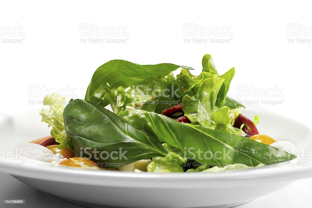 Salad - Smoked Magret with Red Chaud-Froid Sauce royalty-free stock photo