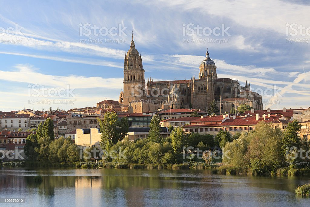 Salamanca Cathedral stock photo