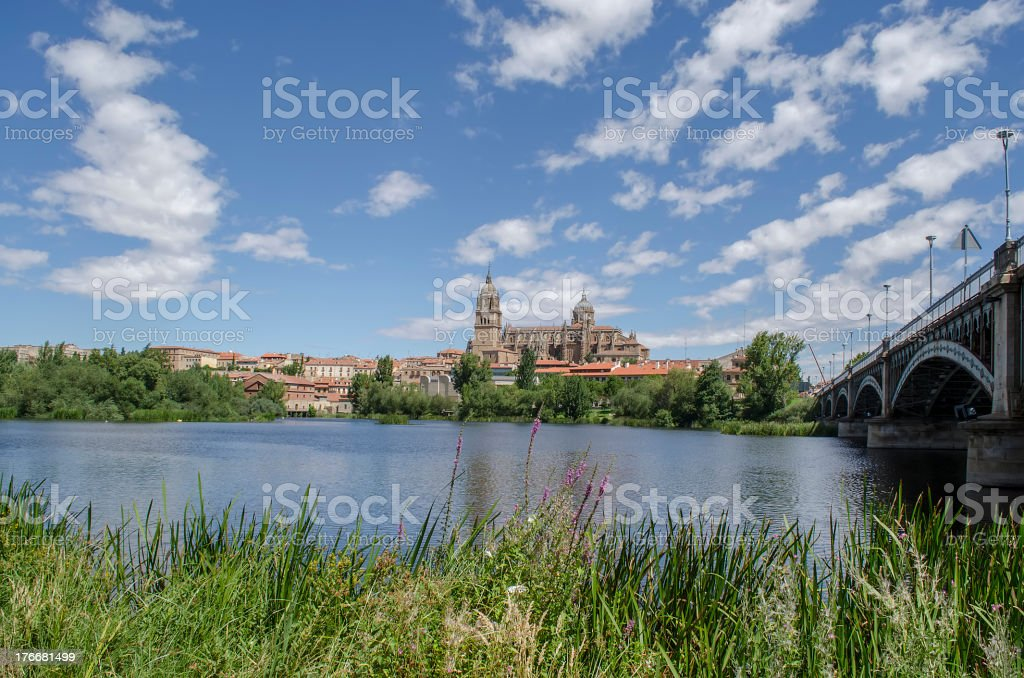 Salamanca Cathedrals royalty-free stock photo