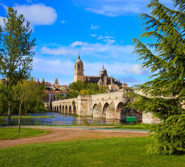 Puente de horizonte y romano Salamanca sobre el Tormes - foto de stock