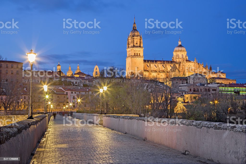 Salamanca - The Cathedral and bridge Puente Romano stock photo