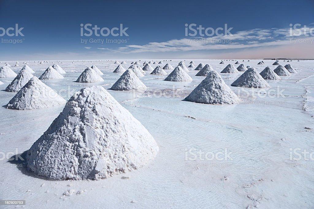 Salar de Uyuni, Altiplano Bolivia royalty-free stock photo