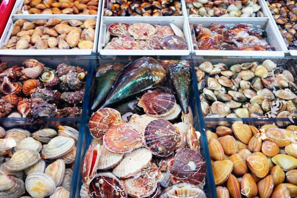 新鮮なアサリとターボの販売シェル釜山 - 釜山 ストックフォトと画像