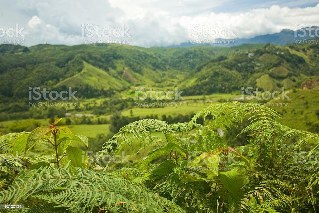 Salento, Colombia royalty-free stock photo