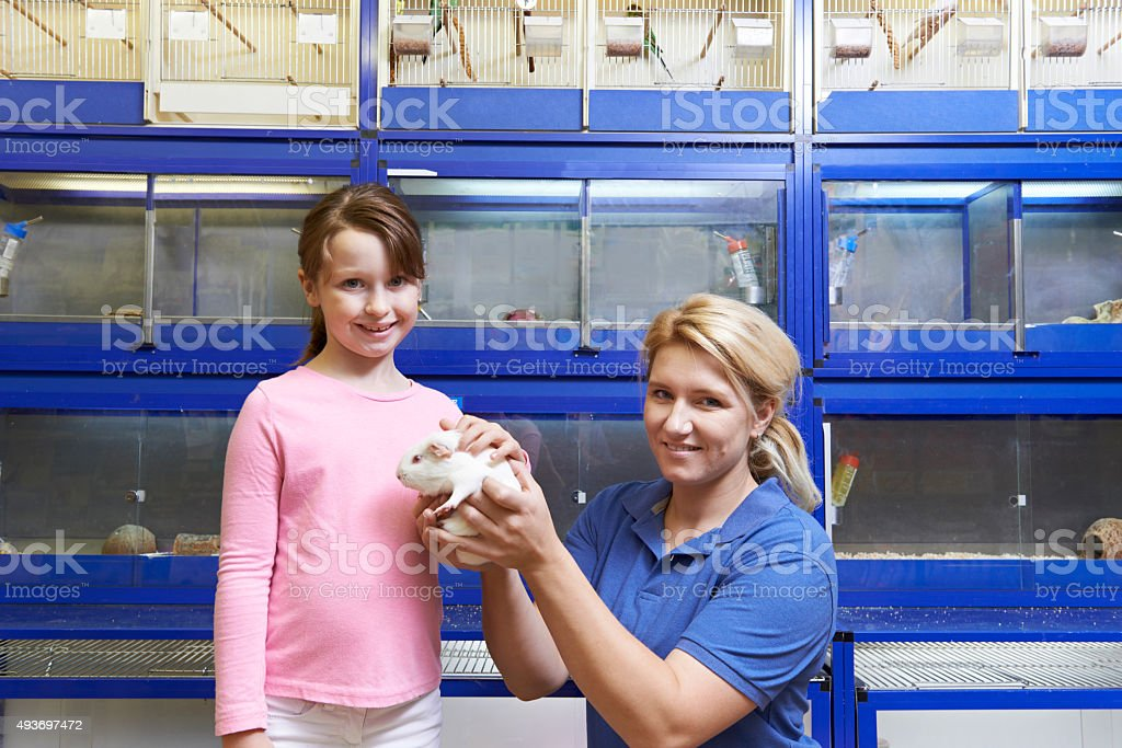 Sales Assistant Showing Girl Guinea Pig In Pet Store stock photo