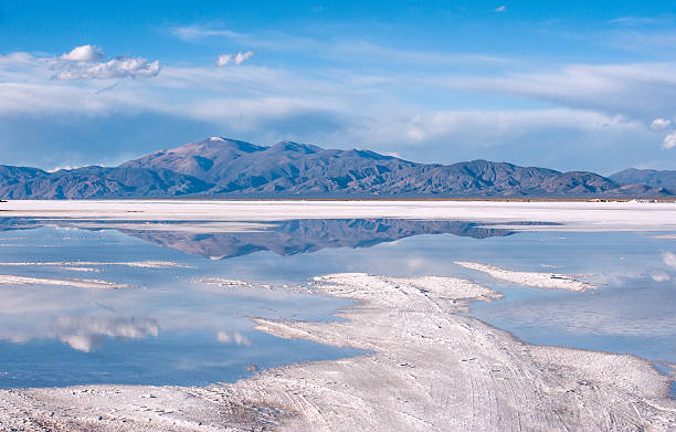 Salinas Grandes salt desert on Argentina Andes Salinas Grandes on Argentina Andes is a salt desert in the Jujuy Province. More significantly, Bolivas Salar de Uyuni is also located in the same region. lake bed stock pictures, royalty-free photos & images