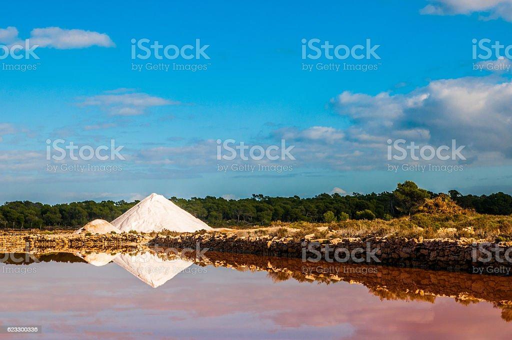 Saline auf Mallorca, Ses Salines stock photo
