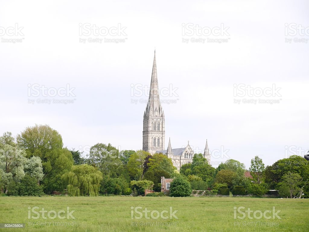 salisbury Cathedral viewed across Harnham water meadows stock photo