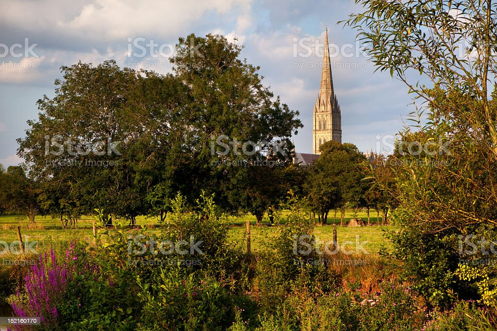 Salisbury Cathedral, Wiltshire, UK stock photo