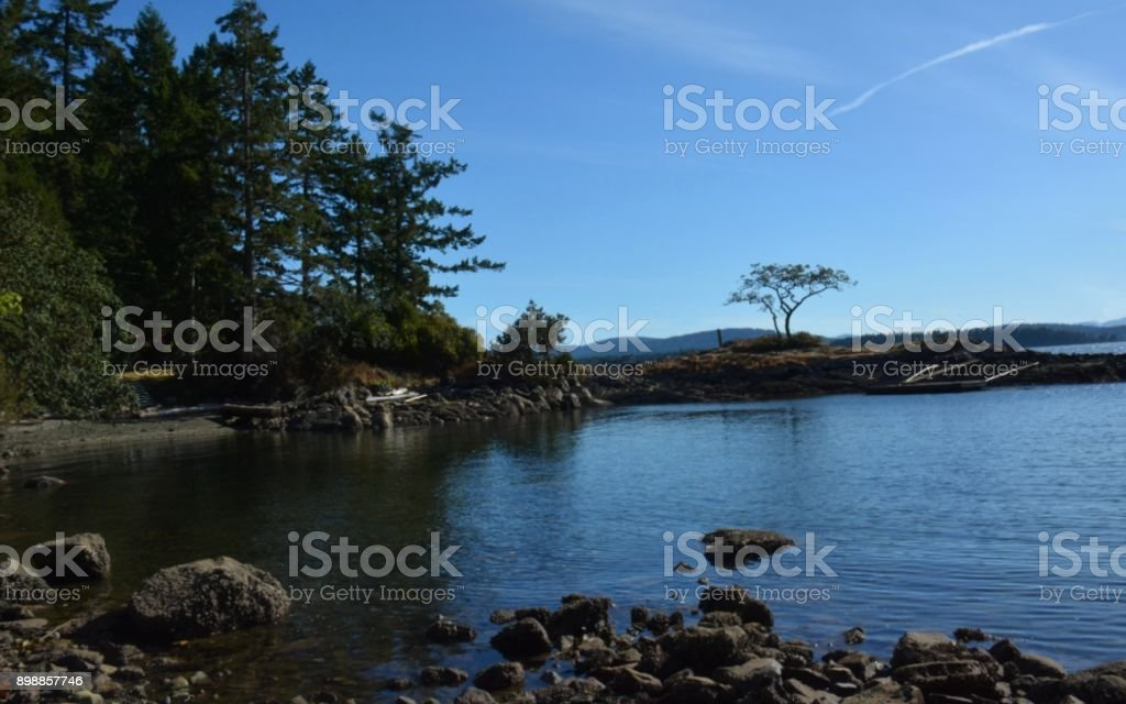 Salish Sea royalty-free stock photo