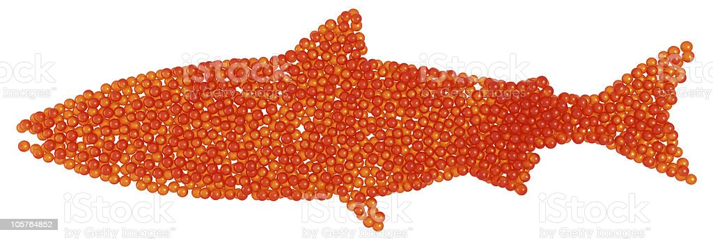 XXXL Salmon Caviar fish shape royalty-free stock photo