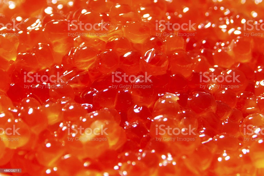 salmon caviar royalty-free stock photo