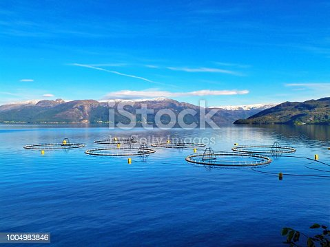 Salmon farm in a fjord between snowy mountains in Western Norway