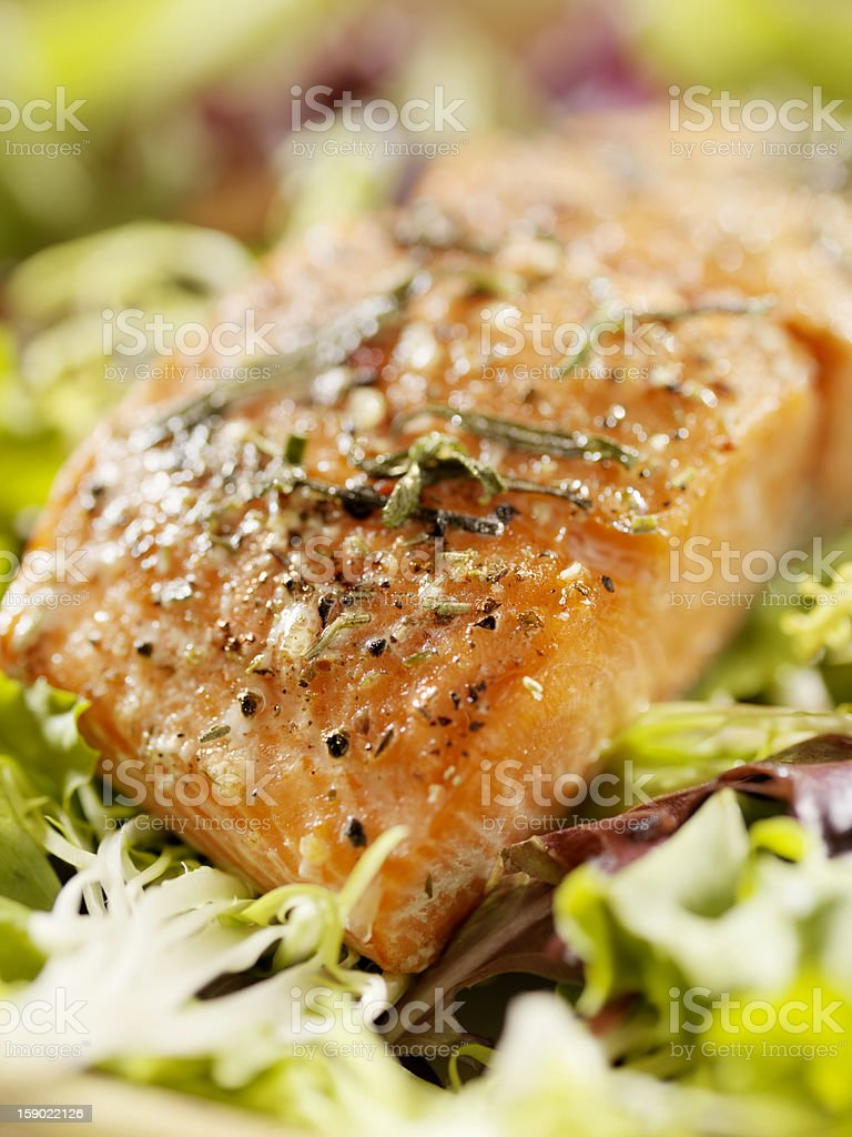 Salmon Filet on a Bed Of Fresh Salad stock photo