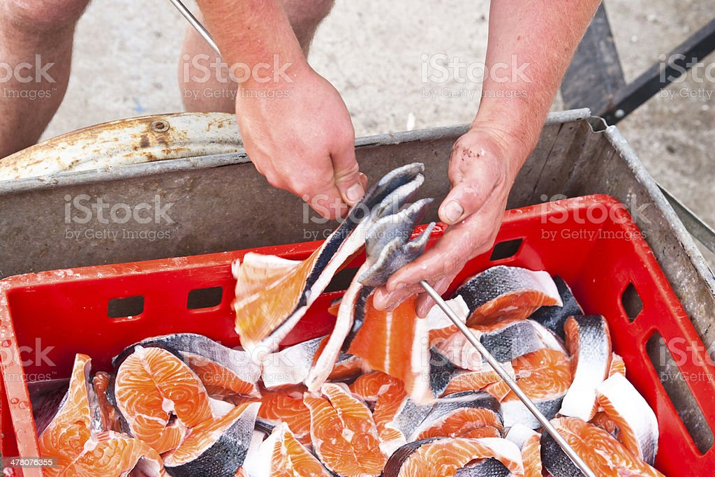 Salmon Fillets and Steaks royalty-free stock photo