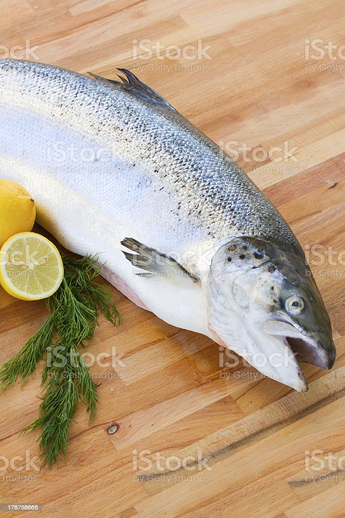Salmon fish close up royalty-free stock photo