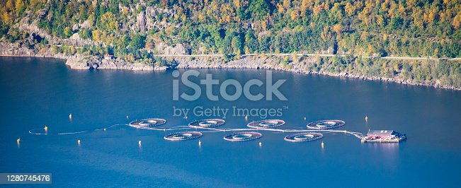 Salmon Fish farm in fjord next to mountains - North Sea Bergen / Stavanger Norway
