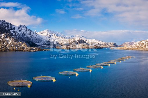Lofoten and Vesteral Islands, Norway, Sea, Agriculture