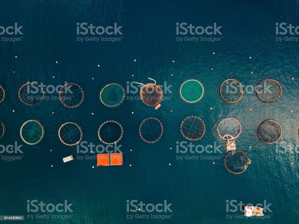 サーモンのケージを浮動ファーム。航空写真ビュー ストックフォト