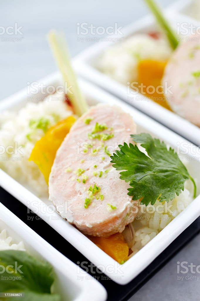 Salmon fish served with rice and pepper royalty-free stock photo