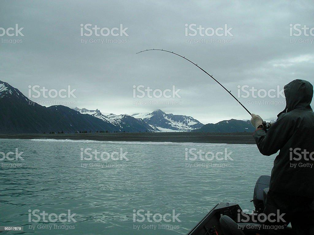 Salmon Fishing in Alaska royalty-free stock photo