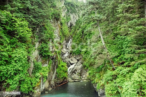 Salmon Gulch, located in Valdez Alaska serves two purposes: It is an area that feeds water to a dam.  This dam provides electricity for the the Copper River Valley. The Salmon Gulch is also the breeding grounds for returning salmon.