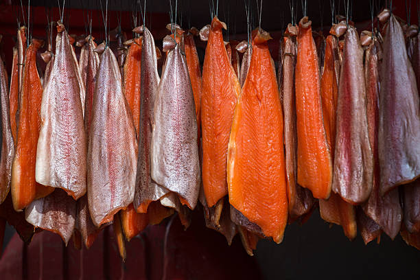 Salmon hanging in an ordered pattern for smoking - foto de acervo