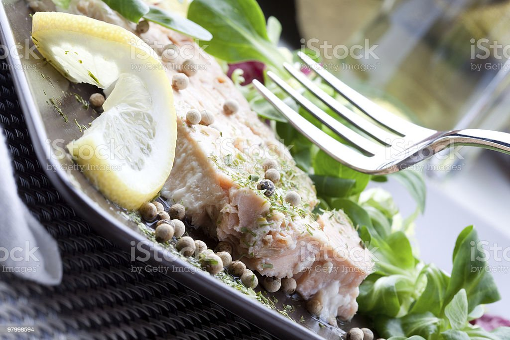 Salmon Plate royalty-free stock photo