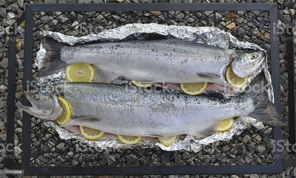 Salmon ready to grill stock photo