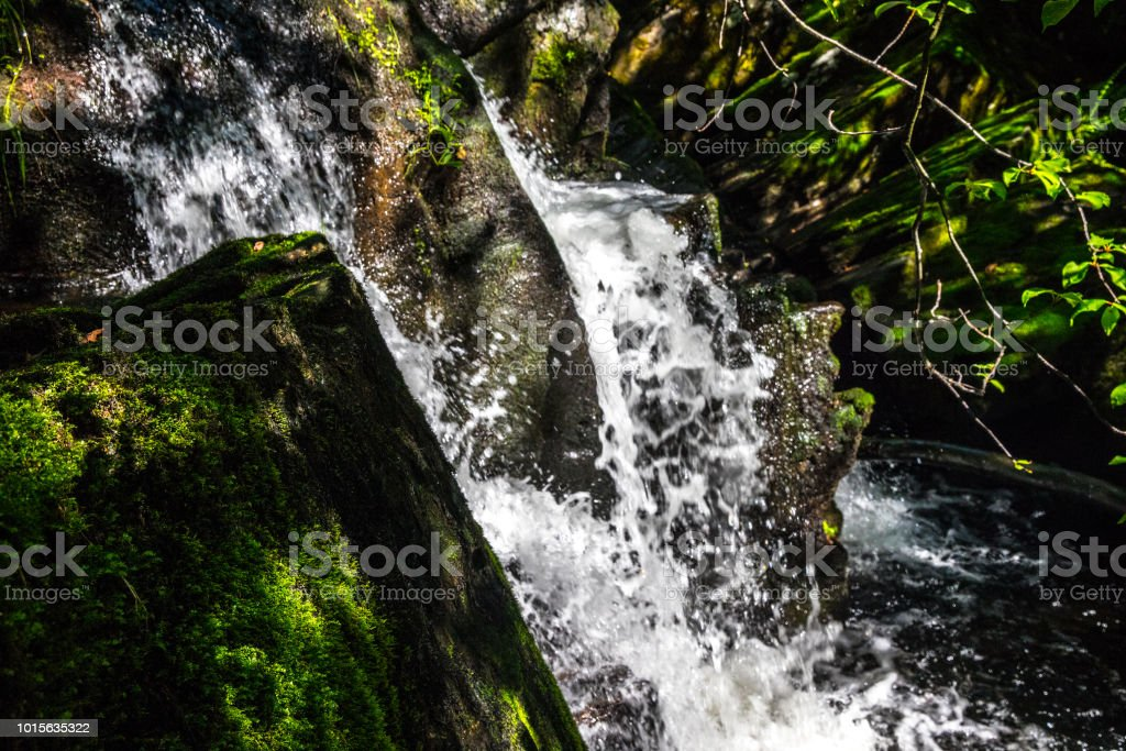 salmon river stock photo