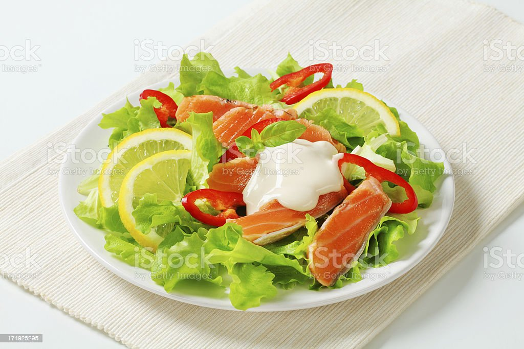 salmon salad royalty-free stock photo