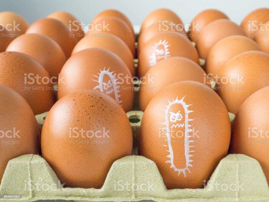 Salmonella bacterium drawn on the chicken eggs concept stock photo