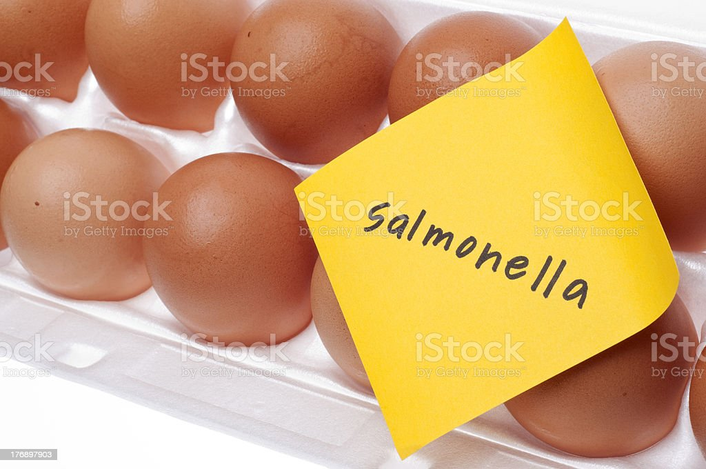 Salmonella Egg Warning royalty-free stock photo