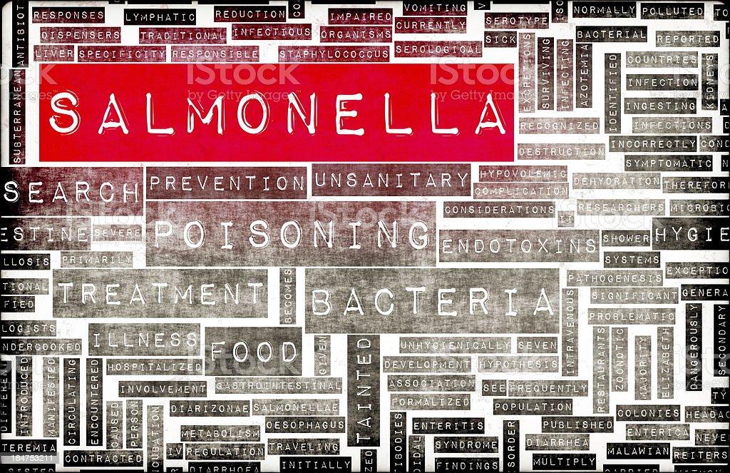 Salmonella royalty-free stock photo