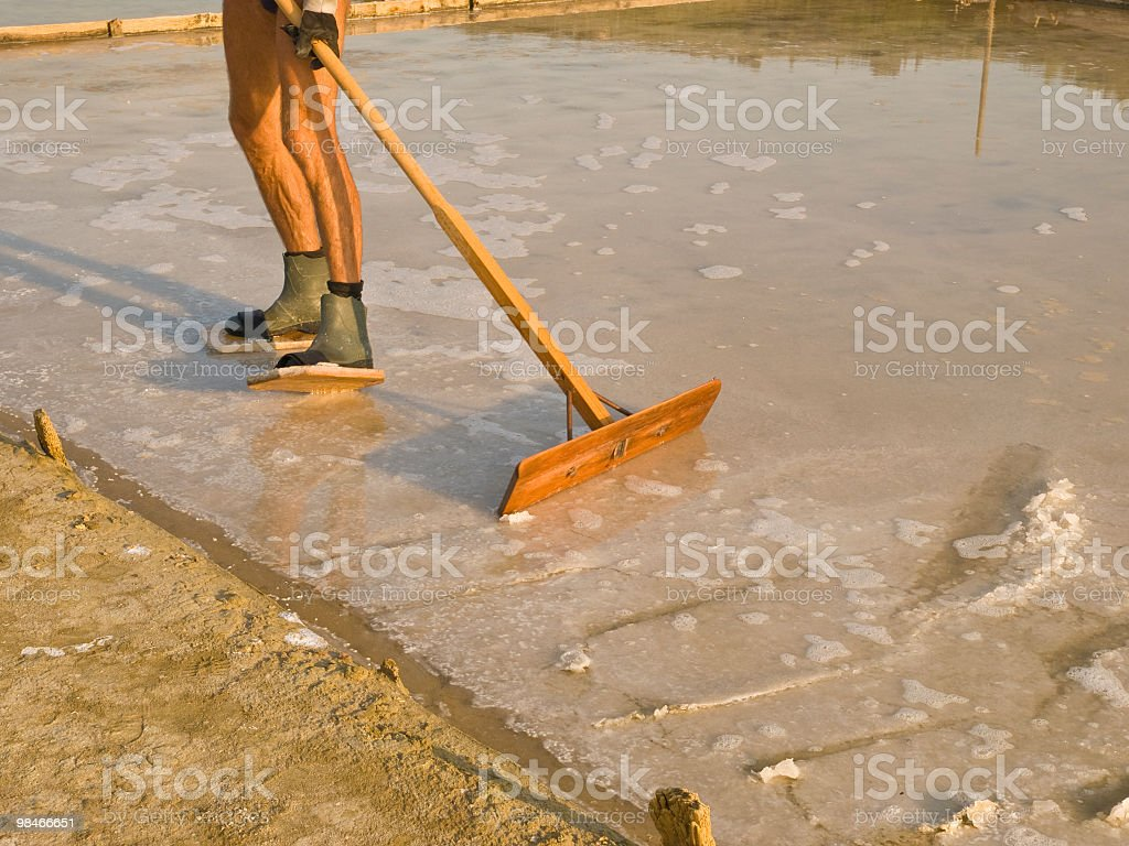 Salt collecting royalty-free stock photo