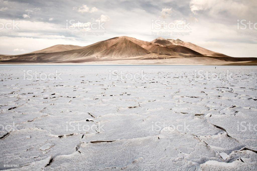 Salt crust in the shore of lagoon and salt lake Tuyajto stock photo