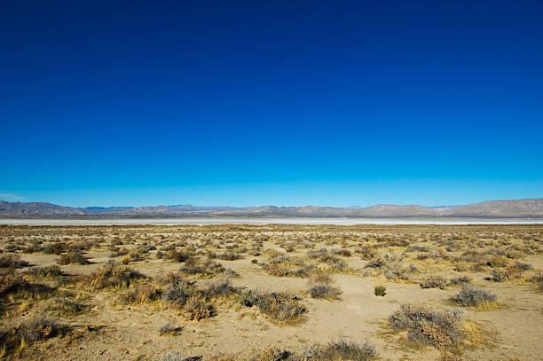Salt Desert stock photo