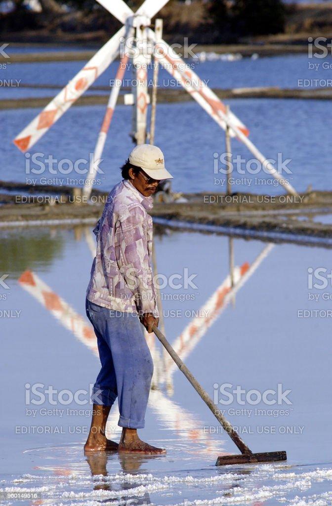 Salt farmers carry salt to be stored in Sidoarjo stock photo