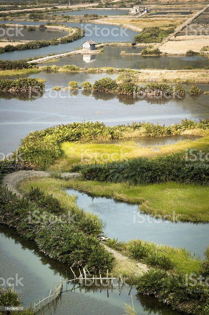 Salt Farms On Cat Ba Island In Halong Bay, Vietnam stock photo